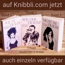 Trilogie Roman Liebe Neuro-Thriller Buch Serie Giulia und Ben
